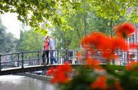 Ville des diamants pour certains, paradis interdits pour d'autres, Amsterdam accueille une diversité de touristes qui, entre vélos, tulipes et curiosités n'ont pas assez d'yeux pour tout voir. Canaux, art, littérature, architecture, coffee shop, ... les richesses sont nombreuses. Difficile de s'ennuyer dans cette ville qui mêle tradition et modernité à un rythme aussi doux et lent que son fleuve et ...