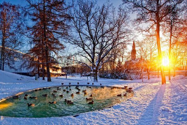 A l'instar de l'ensemble du pays, la ville d'Helsinki est très aérée