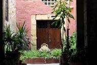 La vieille ville d'Eivissa regorge de patios fleuris cachés dans les ruelles.