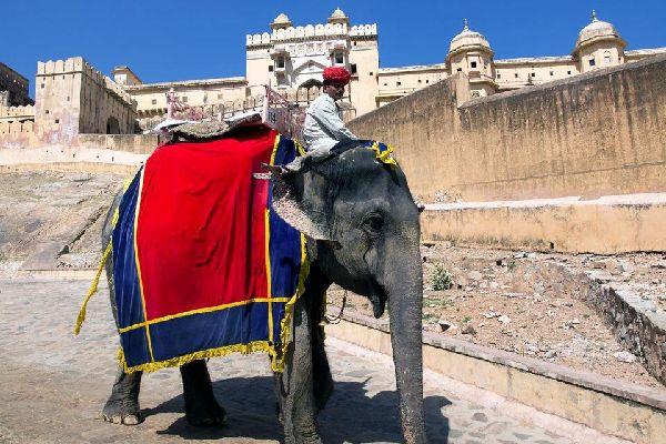 Jaipur, la rosa, seduce siempre a pesar de su intensa circulación, su incesante alboroto y su contaminación. Callejea a lo largo de sus avenidas rectilíneas casi todas tapizadas de puestos, bazares agrupados por oficios y terrazas, lugares entrañables llenos de vida. En el sur, el Jauhari Bazar, el mercado de los joyeros y de las telas, es uno de los centros más activos de la ciudad. Entra en el City ...