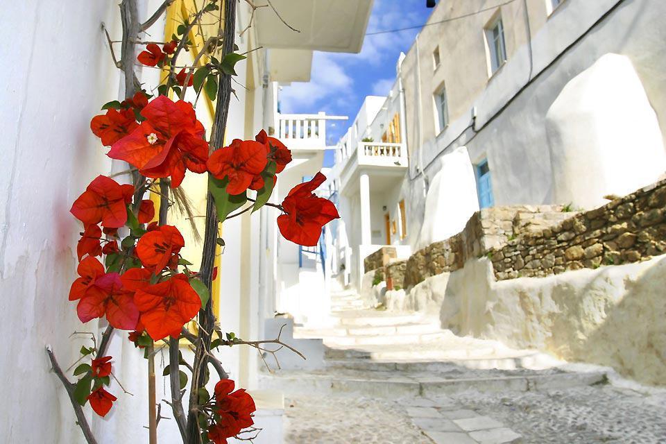 Mykonos se parcourt le long de ses petites ruelles piétonnes.