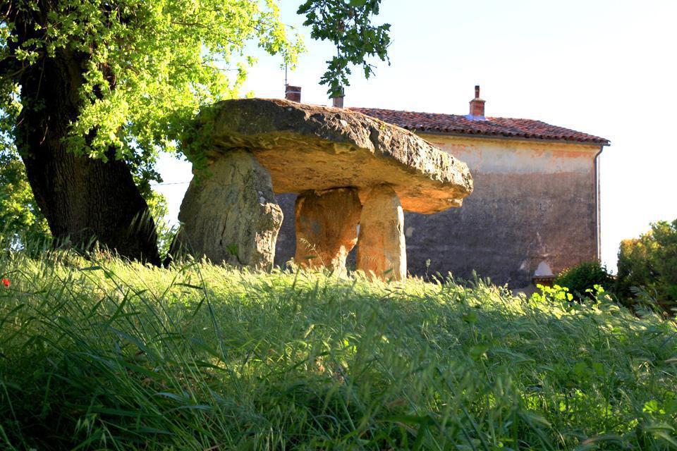 Draguignan, ville provençale réputée pour être la « Porte du Verdon », est un lieu de séjour idéal.  La commune abrite de beaux musées dont celui de l'artillerie, puisqu'elle en est la capitale. De plus, la ville n'est située qu'à une trentaine de kilomètres de la mer et des gorges du Verdon, et à une centaine de la montagne. Elle dispose donc d'une situation favorable pour la période estivale.  Capitale ...