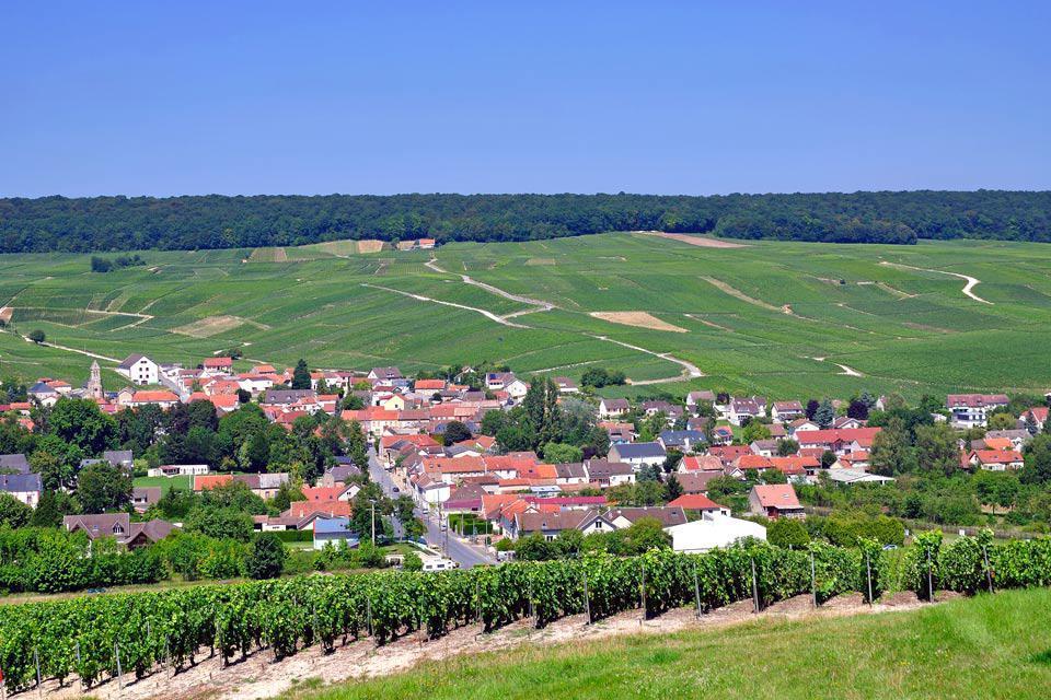 Située au cœur de 30 000 hectares de vigne, la ville d'Epernay qui tient son nom de l'appellation gallo-romaine « sparnacus » signifiant lieu planté d'épines est implantée dans une région viticole. L'essentiel de l'histoire moderne et de l'économie de la commune est lié au champagne, dont la production s'est développer à partir du XVIIIème siècle et qui en constitue le principal atout touristique. Depuis ...