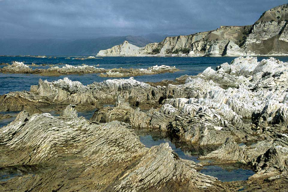 In Kaikoura you will have the opportunity to go on whale-watching excursions or even swim with the dolphins.