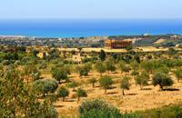 Bordée de longues plages et émaillée de villages traditionnels, la côte sud de la Sicile est propice au farniente. Disséminés parmi les dunes, avec à l'arrière des cultures maraîchères et horticoles, les hôtels offrent une vue dégagée sur les flots bleus de la Méditerranée. De bonne taille, ces établissements proposent des loisirs variés qui permettent de passer un séjour divertissant. Mais il serait ...
