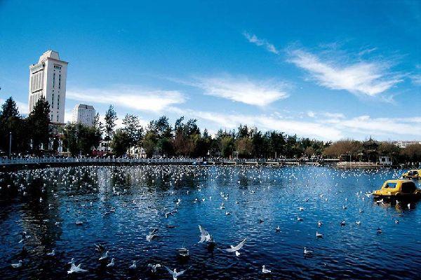 El lago está situado en un parque en el centro de la ciudad. Es famoso porque acoge a muchas aves migratorias.