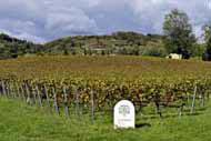 La provincia de Brescia, la segunda de la región por sus dimensiones, es muy agrícola.
