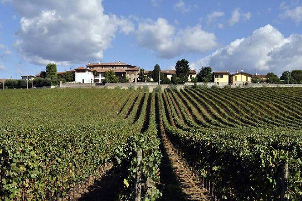 Brescia se sitúa en el altiplano del Po, a la salida del valle de Trompia, a los pies del monte Maddalena y la colina Cidneo.