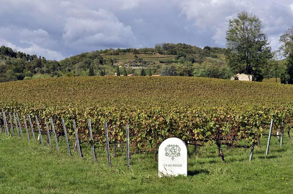 La province de Brescia, la deuxième de la région par sa taille, est fortement agricole.