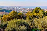 Sur la côte Adriatique, dans la partie nord-orientale des Marches, le littoral sablonneux de Pesaro est presque un prélude aux plages de la côte romagnole. Centre industriel d'une certaine importance, mais également ville balnéaire qui se dessine comme une terrasse sur la mer avec un arrière-pays aux paysages naturels relaxants, Pesaro conserve la trace d'un passé d'art et de culture. Ville natale ...