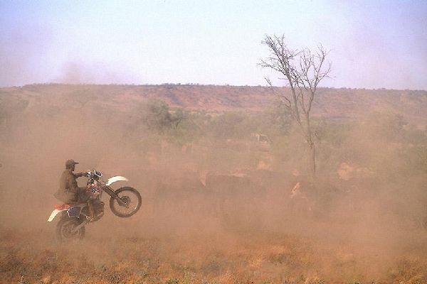 Alice Springs nació cuando se descubrió oro en Arltunga, a 100 km de la ciudad.