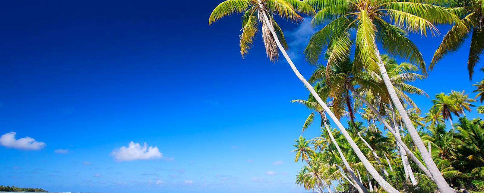 Caraïbes; Caraibes; Jamaïque; Jamaique; Spanish Town;