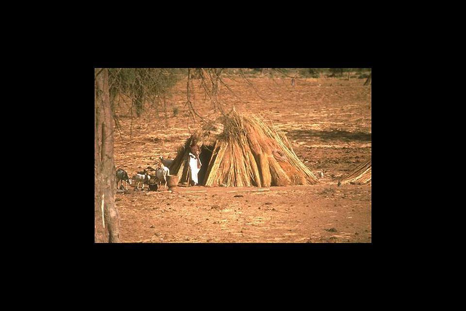 Un'abitazione tradizionale del Mali, fotografata in questa regione sod-occidentale del Mali.