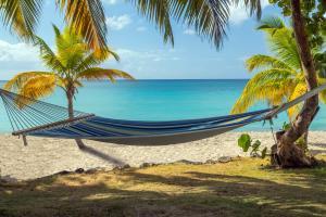 Caraïbes; Caraibes; Martinique; Le François;