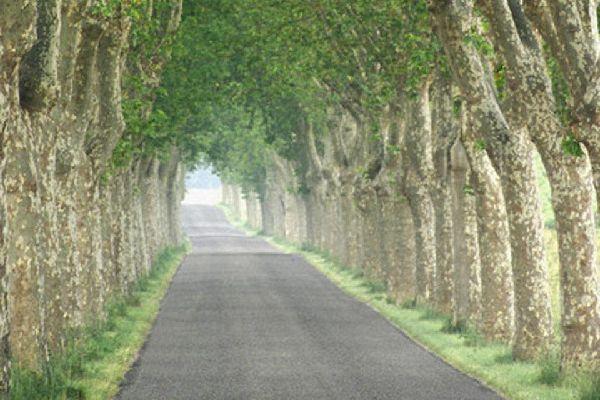 Aucune autoroute ne dessert la ville qui se trouve à 600 m d'altitude au pied des monts du Cantal.