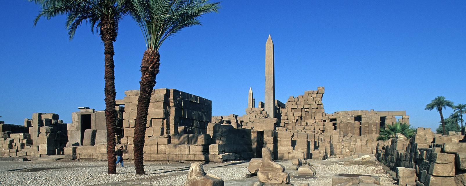 Afrique; Egypte; Louxor;