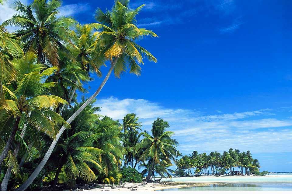 Vaitape, il principale villaggio di Bora Bora, non è certo privo di fascino. Vicino al centro artigianale si trova la tomba di Alain Gerbault, famoso navigatore che fece il giro del mondo in solitaria nel 1929....