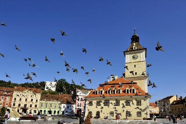 Cette vaste place colorée très photogénique est un point de départ idéal pour visiter la ville de Brasov.