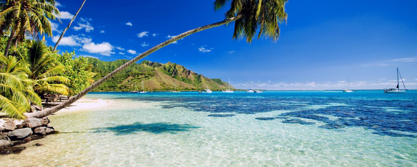 Océan Pacifique; Polynésie; Tahiti; Bora Bora; Moorea;