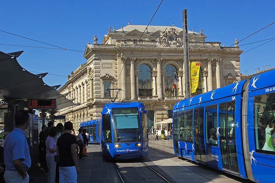Trois lignes de tramway ont été mises en place. La ville a inauguré sa dernière ligne en 2010, dans le but de faciliter le déplacement des Montpelliérains.