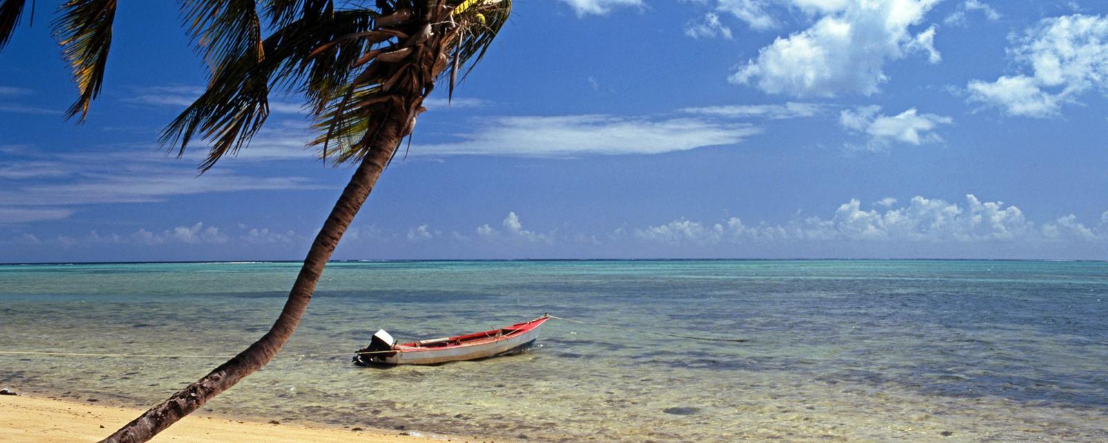 Caraïbes; Caraibes; Trinidad et Tobago; Scarborough;
