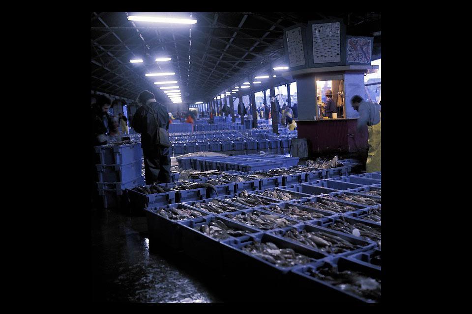 Dans la mesure où Aberdeen détient le plus grand port au monde, la pêche y compte parmi les principales activités économiques.