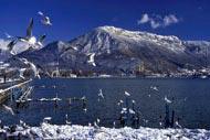 L'inverno si vive anche con gli occhi, grazie al panorama sullo scrigno di montagne che custodisce la città. Per lo sci, appuntamento sulle piste di fondo della piana.