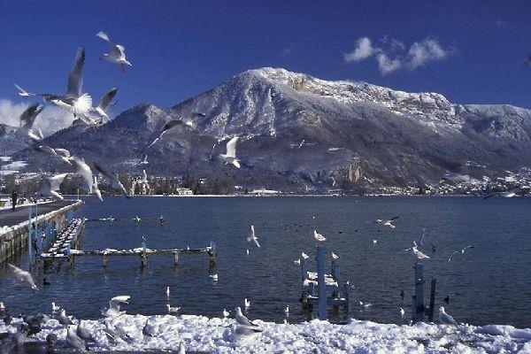 L'hiver se vit en panoramique, avec vue sur l'écrin de montagnes de la ville. Pour le ski, direction les pistes de fond du plateau.