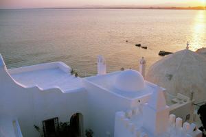 Afrique; Tunisie; Hammamet;