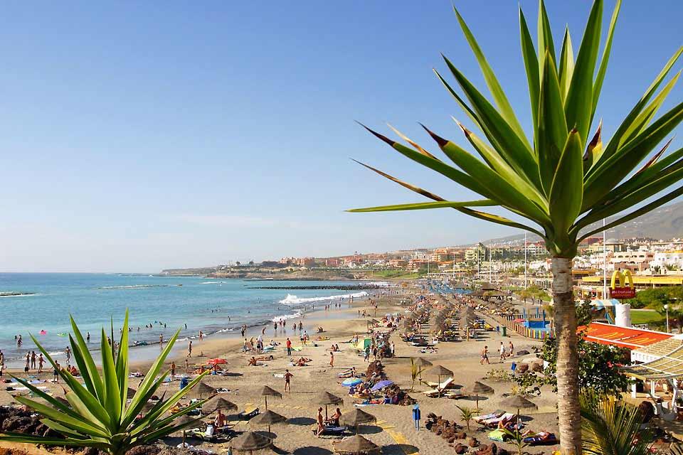 Costa Adeje es un nuevo núcleo turístico en el sur de Tenerife, justo al lado de Playa de las Américas. Se trata de la zona más exclusiva del municipio donde la mayoría de los resorts 5 estrellas decidieron establecerse. Incluye las playas de Fanabe, del Duque y de la Caleta. Se sitúa aproximadamente a unos 25 kilómetros del aeropuerto Sur de Tenerife y cuenta con un sinfín de tiendas y bares. En invierno ...