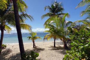 Caraïbes; Caraibes; Guadeloupe; Marie-Galante; Grand Bourg;