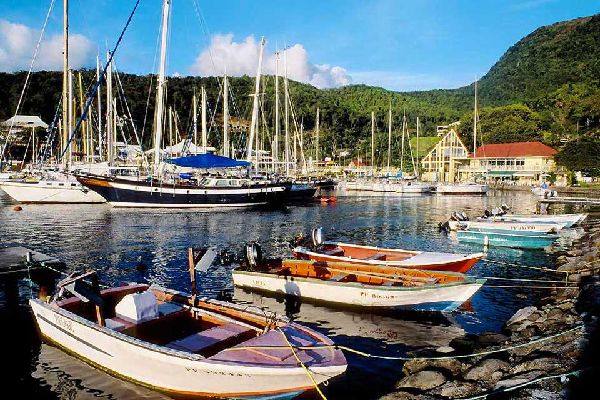 Only a few houses form the tiny village of Bouillante, set up opposite the Caribbean Sea, on the west coast of Basse-Terre. The road of the Traversée, which is sinking into the rainforest, and the underwater reserve of Cousteau are nearby....
