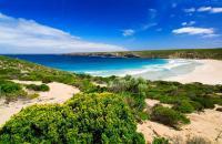 Troisième plus grande île de l'Australie après Melville et la Tasmanie, Kangaroo Island est située à 110 kilomètres au large des côtes d'Adélaïde. Elle a été découverte par l'Occident en 1802, lorsque l'explorateur britannique Matthew Flinders a atterri ici (suivi quelques années plus tard par le français Nicolas Baudin). Cependant, il est estimé que ses habitants d'origine, le peuple Ngarrindjeri, ...