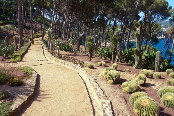 The Lloret del Mar Botanical Gardens have a beautiful section by the sea reserved for cacti.