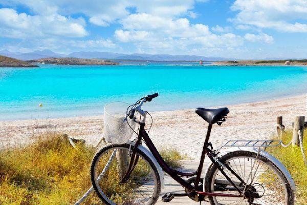 Dire que la baie de Palma est le point le plus touristique de l'Ile est un euphémisme : elle accueille à elle seule 8 des 10 millions de vacanciers qui débarquent chaque année à Majorque.   A l'ouest s'étendent des zones de villégiatures assez récentes et souvent bien entretenues, éparpillées au bord d'une côte rocheuse. L'une des plus chics, Illetas (littérallement «&nbp;petites îles»), se ...