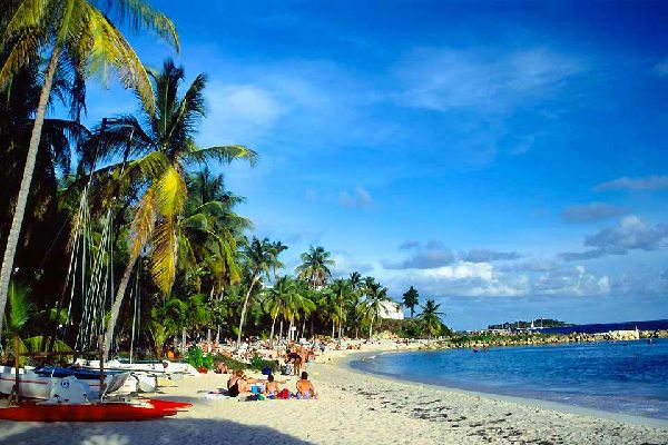 This is the largest seaside resort of Guadelupe, and also the oldest (it grew in the 1960s) and located closest to the airport of Pointe-à-Pitre (within an hour and a half's drive). Located on Grande-Terre, it occupies part of the South Coast, with its resorts of Sainte-Anne and Saint-François. White sand beaches, lagoon coloured water (that of the Atlantic ocean) and coconut trees make up the daily ...
