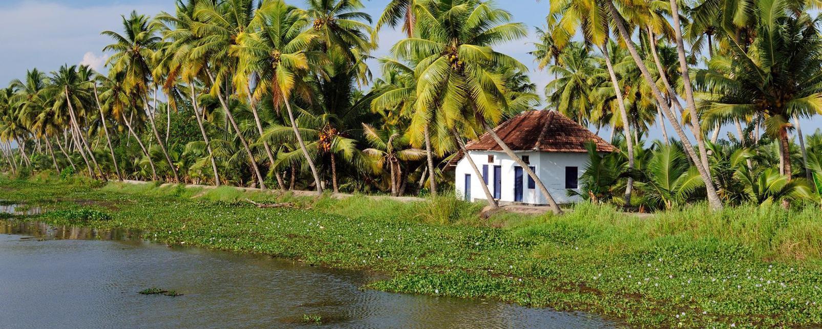 Flug Und Hotel Kerala