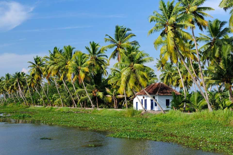 """Kottayam es la capital religiosa de los cristianos de Kerala. Paséate por sus animadas callejuelas y admira la encantadora iglesia ortodoxa de Santa María. Cheriapally, llamada la """"iglesia pequeña"""", y Valiyappaly, la """"iglesia grande"""", son dos iglesias de rito sirio. La entrada al templo de Thirunakkara Shiva, a 3km al sureste, está prohibida a los no hindúes...."""