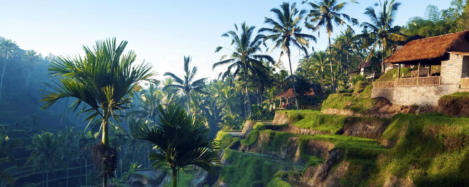 how to travel in ubud