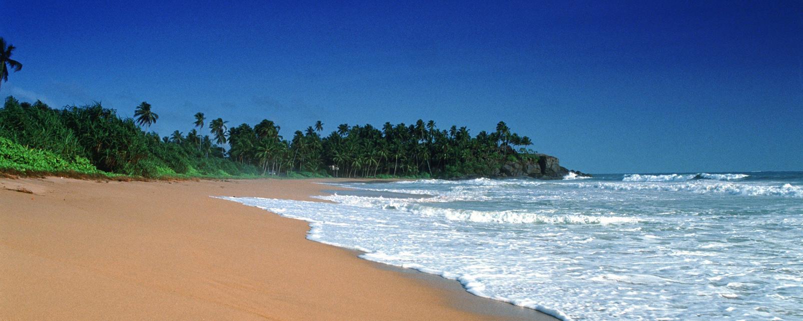 Asie; Sri Lanka; Bentota;