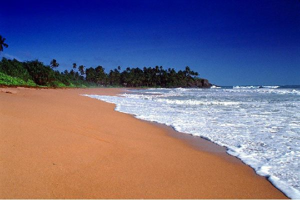 In recent years, Bentota has become a seaside resort that is very popular among tourists. It deserves its reputation for its beautiful sandy beach lined with coconut trees. Visitors come to the region to relax and enjoy the ocean. But you will also have the opportunity to walk on the Bentota Ganga river where you will discover the rich and varied flora and fauna. Around Bentota, you will also find ...