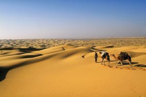 Afrique; Tunisie; Douz;