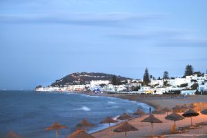 Afrique; Tunisie; Gammarth;