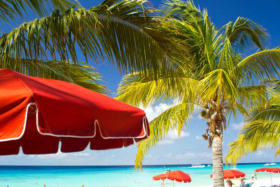 Lucaya, situada al este de Freeport, es una zona eminentemente turística que   reúne hoteles, restaurantes, bares, boutiques y servicios. Una concentración   de numerosas cabañas criollas de madera, de vivos colores, y un   ambiente muy internacional. Para admirar todo tipo de barcos, bien merecen un paseo   el puerto y la zona náutica.En Sanctuary Bay   se puede nadar con los delfines en el complejo ...