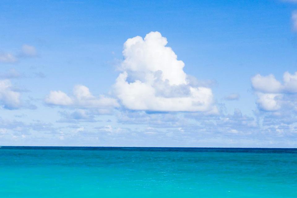 Saint-James est l'un des onze districts de la Barbade, sur la côte Ouest de l'île, où les Anglais débarquèrent. On découvre encore les vestiges de la culture britannique à Holetown, où se déroule chaque année le célèbre Festival d'Holetown qui commémore l'installation des colons à la Barbade. Une région qui ravira les amateurs de golf avec ses trois parcours du Sandy Lane, d'Apes Hill et du Royal Westmorland. ...