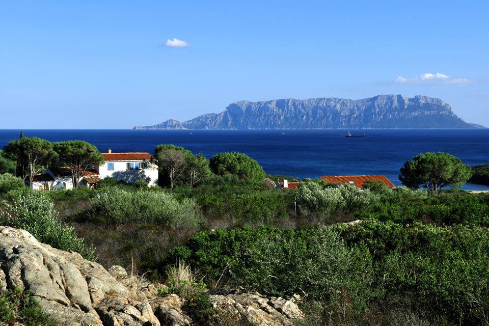 Principale porte d'entrée du nord de la Sardaigne grâce à son aéroport, la ville d'Olbia a grandi très vite avec le développement du tourisme dans les années 1960. Et la petite agglomération n'en tire pas un charme renversant. Mais son site, au fond d'un golfe étroit, a gardé toute sa majesté. Les environs proches de la ville recèlent de belles plages, en allant vers le sud-est en direction de Porto ...