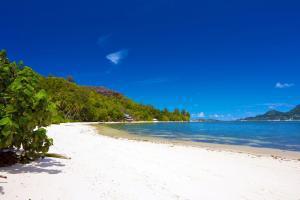 Océan Indien; Seychelles; Ile du Cerf;