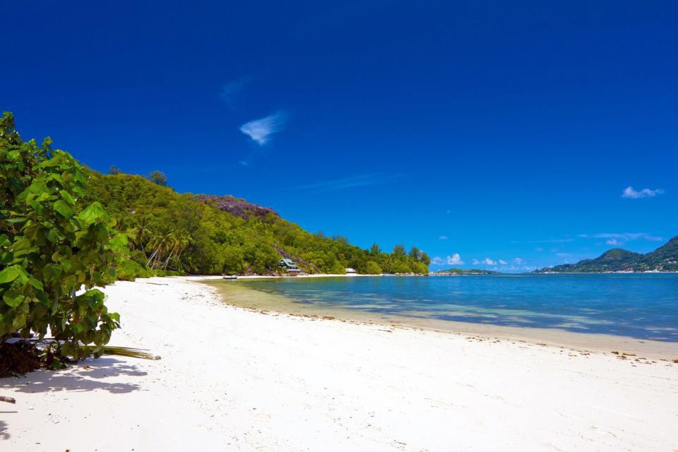 Cerf Island è una piccola isola rigogliosa di 1,5 km di lunghezza per 1 km di larghezza si trova a 10 minuti di barca da Mahé. La sua costa nord si estende lungo il parco marino nazionale di Sainte Anne, che comprende anche le isole Longue, Moyenne, Ronde e Sainte-Anne. È costeggiata da una superba barriera corallina: un luogo ideale per le immersioni subacquee. Qui non ci sono cervi, contrariamente ...