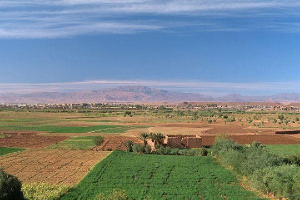 Les environs proches de la villes sont encore verts, mais le désert n'est pas loin...