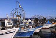 A proximité du site antique, dominé par son fort, le port de Pafos est un agréable lieu de balade et d'animation touristique.